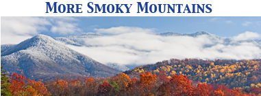 Smokies_label